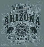 Arizona wild horse  rodeo — ストックベクタ