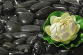 Siyah taşlar — Stok fotoğraf