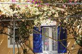 Flower house — Stock Photo