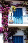 Flower house — Stockfoto