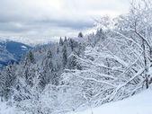 Снег и горы — Стоковое фото
