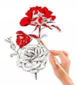 De la mano con pincel pintar una hermosa rosa — Foto de Stock