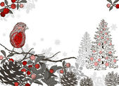 Christmas hand drawn background for xmas design with winter bird — Stock Vector