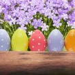 Colorful easter eggs on nature background with spring flowers — Stock Photo #62875461