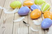 Colorful easter eggs and plumelets on wooden background — Stock Photo
