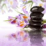 Purple flowers black stones on water  — Stock Photo #66843703