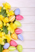 Easter eggs with narcissus — Stock Photo