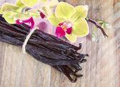 Vanilkové tyčinky a orchidej květina — Stock fotografie