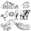 Farm and agriculture pictures — Stock Vector #68580195