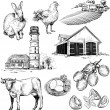 Vector farm and agriculture pictures — Stock Vector #70724635