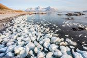 Sunny morning in the Arctic - Spitsbergen, Svalbard — Stock Photo