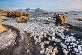 Arctic autumn landscape - sunny morning — Stock Photo