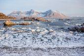 Ice on the Arctic shore - Spitsbergen, Svalbard — Stock Photo
