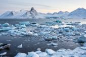 Extraordinary, icy world of the Arctic fjord — Stock Photo