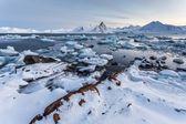 Winter in the Arctic - coast of Spitsbergen, Svalbard — Stock Photo