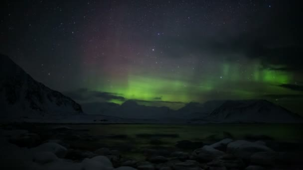 Northern Lights above the mountains and fjord - Arctic, Spitsbergen — Vídeo de stock