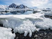 Arctic landscape with glaciers - Spitsbergen, Svalbard — Stock Photo