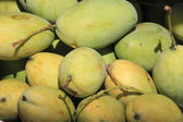 Closeup of a small group of mangoes, some still green and some m — Foto de Stock