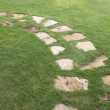 Stone path on green grass — Stock Photo #60735767