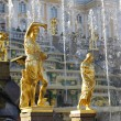 Grand Cascade Fountains At Peterhof Palace, St. Petersburg. — Stock Photo #61603411