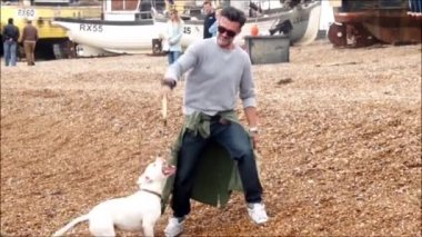 Man plays with his dog on the beach — Stock Video