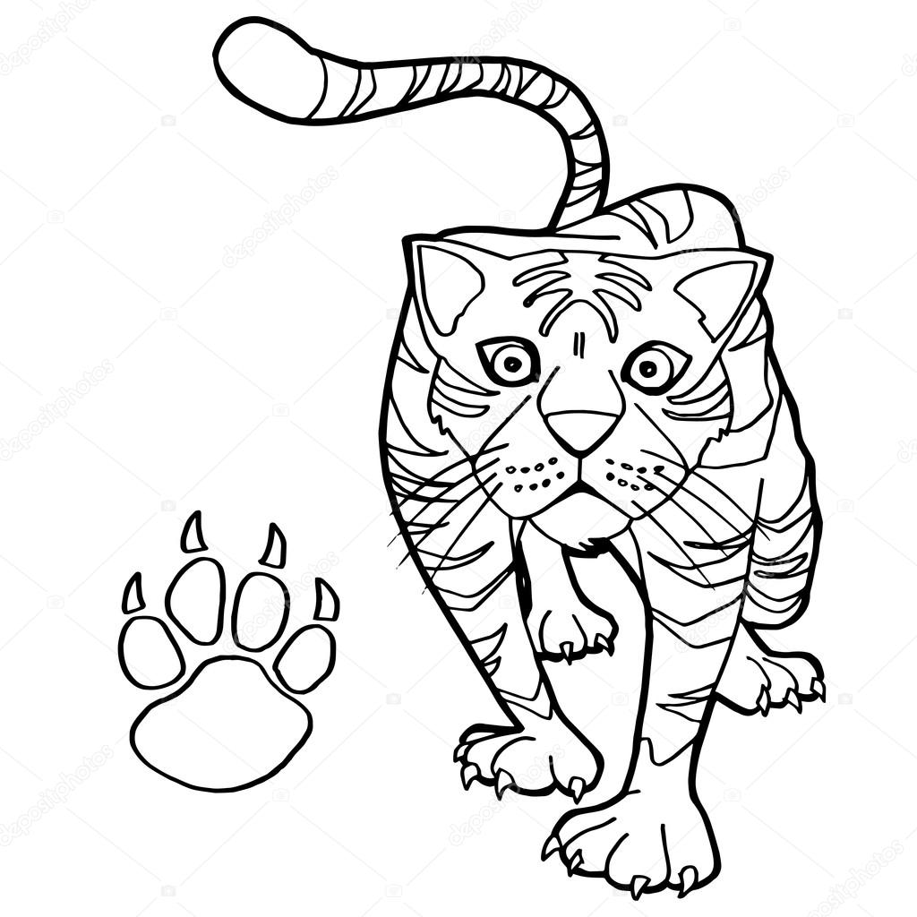 Clip Art Paw Print Coloring Page tiger with paw print coloring page vector stock 85583684