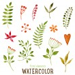 Floral Set with Watercolor Flowers — Stock Vector #70414601