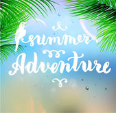 Summer Adventure Background — Stock Vector
