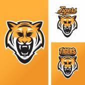 Tiger mascot for sport teams — Stock Vector