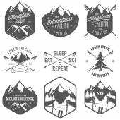 Set of vintage skiing labels and design elements — Stock Vector