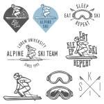 Set of retro ski emblems, badges and design elements — Stock Vector #60124341