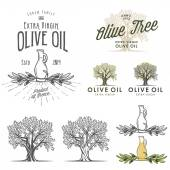 Olive oil labels and design elements — Stock Vector