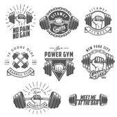 Set of vintage gym emblems, labels and design elements — Stock Vector