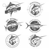Set of marlin fishing emblems, badges and design elements — Stock Vector