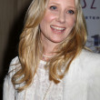 Anne Heche — Stock Photo #52042883