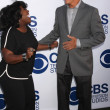 Постер, плакат: Sheryl Underwood and Gregory Harrison