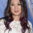Michelle Branch — Stock Photo #52234469
