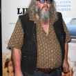 ������, ������: Mark Boone Junior