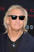 Joe Walsh — Stock Photo