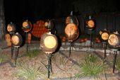 Solar System Carved Pumpkins — Zdjęcie stockowe
