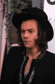 Harry Styles — Stok fotoğraf