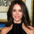 Abigail Spencer — Stock Photo #65189375