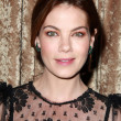 Michelle Monaghan — Stock Photo #65758591