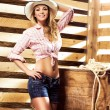 Young, happy and sexy cowgirl — Stock Photo #55749851