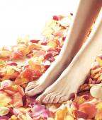 Beautiful legs with flower petals — Stock Photo