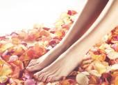 Composition de la spa des jambes et des pétales — Photo