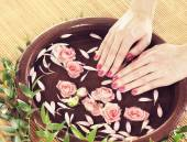 Hands with flowers and petals — Stock Photo