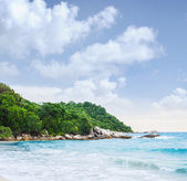Tropical forest and sea coast — Stock Photo