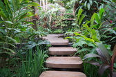 Stepped path through the Thai nature — Stock Photo