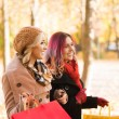 Two girls having a pleasant talk while walking the autumn park — Stock Photo #83376912